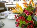 flores-7-1