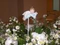 batizados-6